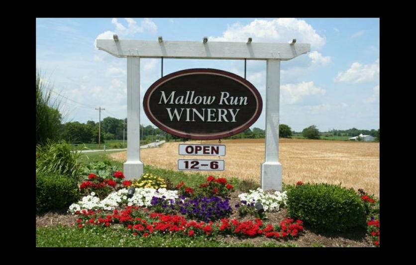 Mallow Run Winery Event