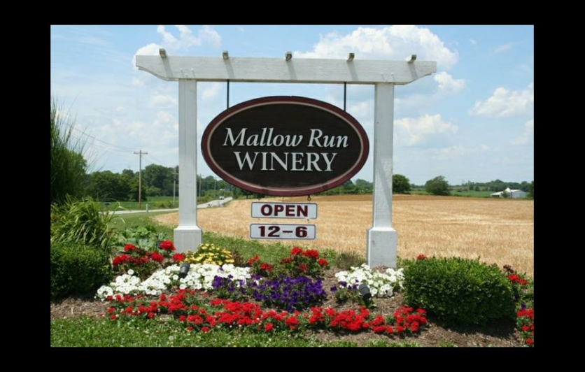 Mallow Run Winery Event