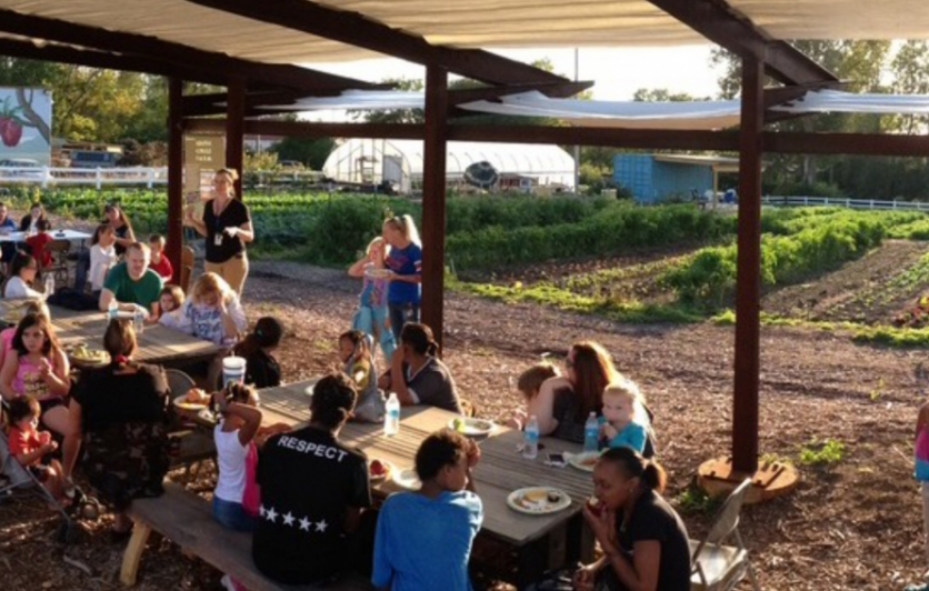 Many people seated at picnic tables in middle of urban farm