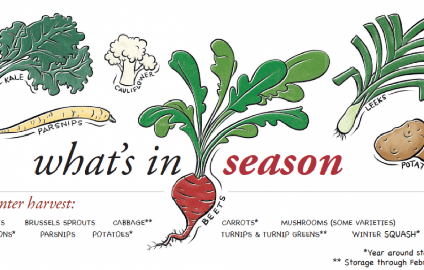 What's In Season Indy Illustration