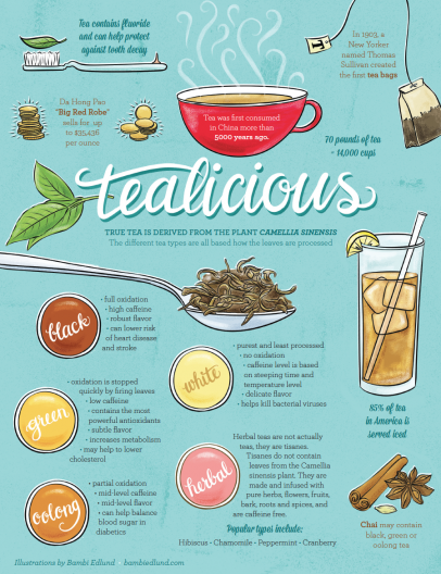 An Illustration of the History of Tea and its Different Types