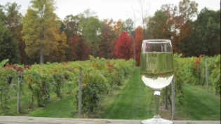Butler Winery and Vineyard