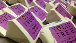 Tulip Tree Creamery