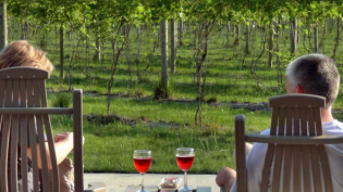 indiana Wineries, Edible Indy, Vintage indiana