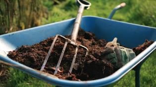Dirt on Gardening Edible Indy Summer 2015, Jo Ellen Meyers Sharp